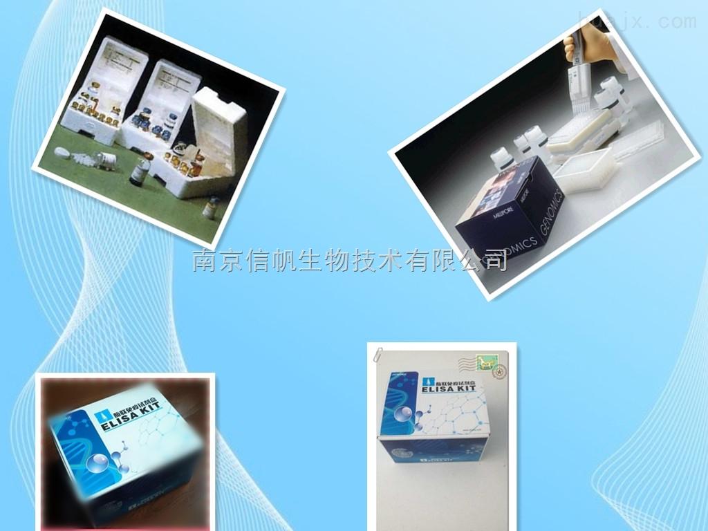 大鼠Adropin蛋白(AD)elisa试剂盒免费代测