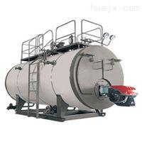 山东龙兴厂家燃气蒸汽导热油锅炉