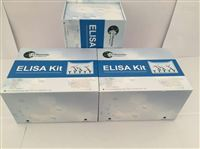 β乳球蛋白检测试剂盒