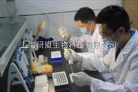 人饥饿素(GHRL)ELISA检测试剂盒